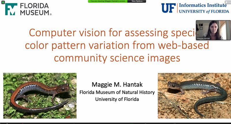 UFII Fellows Journal Club Virtual Seminar – Dr. Maggie Hantak